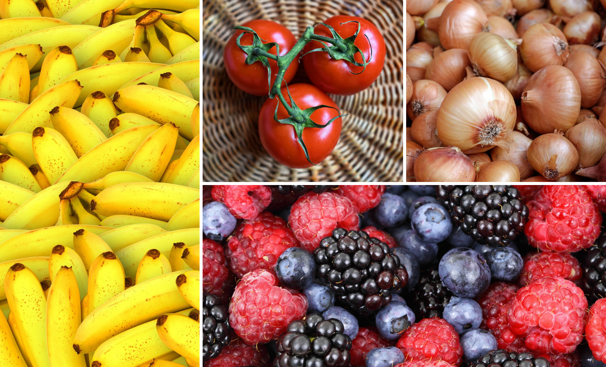 Keep your Healthy Food Fresh for Longer