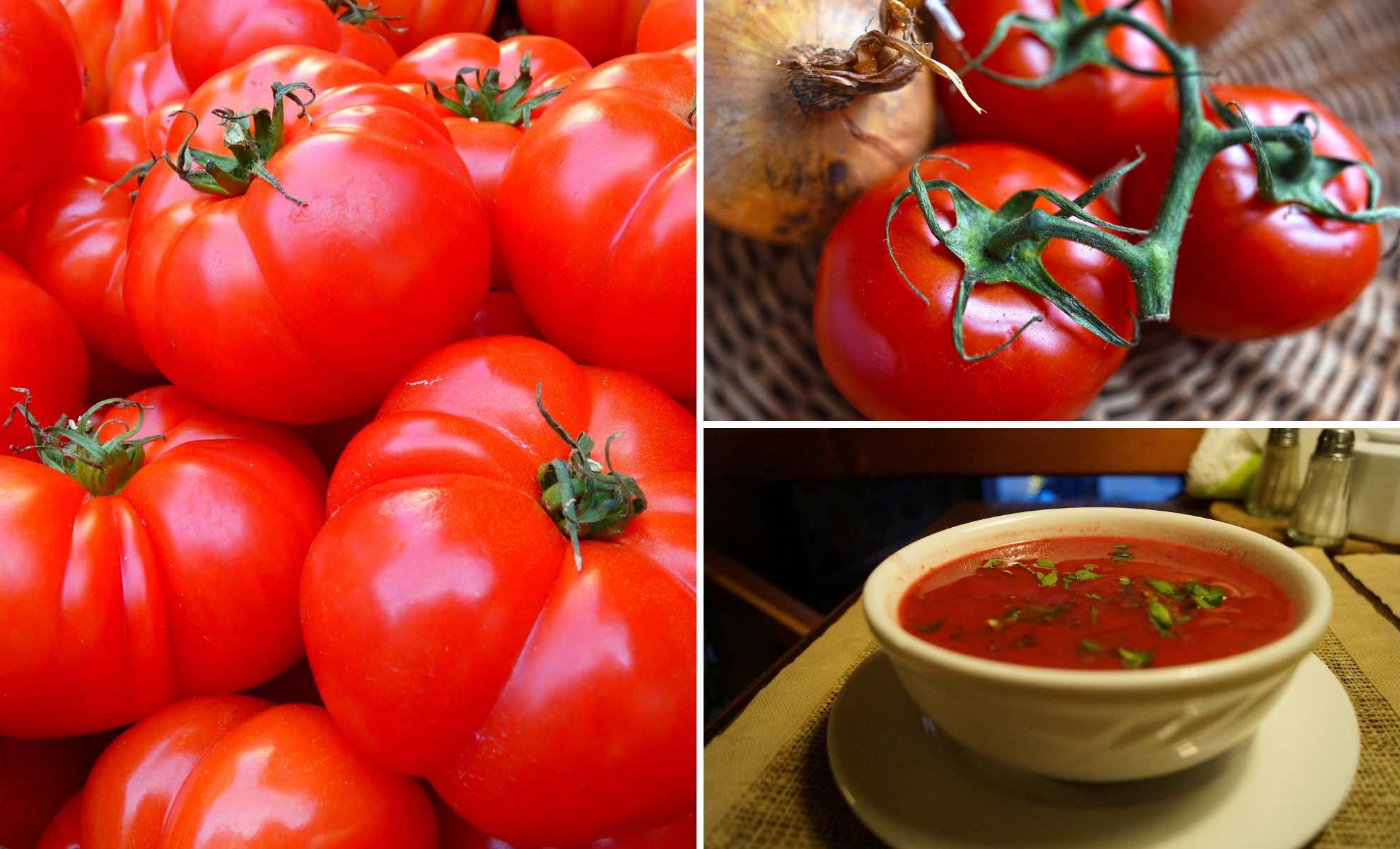 Winter is coming. Time to Make Homemade Tomato Soup